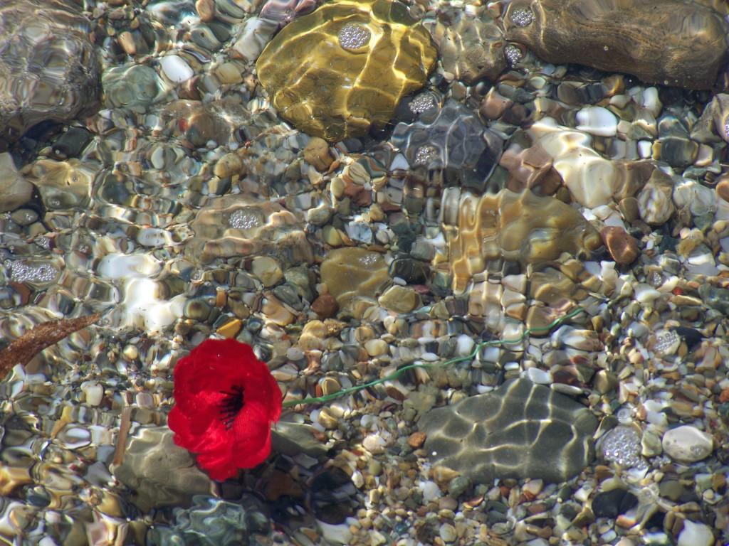 Remembrance at Anzac Cove