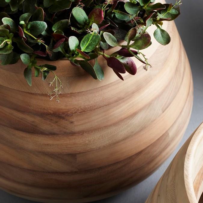 Tuber planters in Iroko wood by Haldane Martin for Indigenus.
