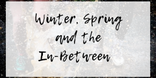 Winter, Spring and the In-Between