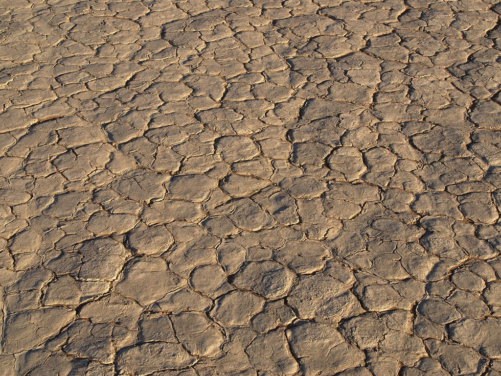 Image is of a dried vlei. The earth is cracked.